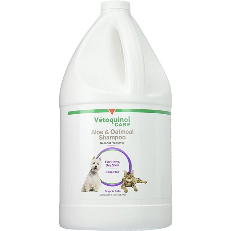 Aloe And Oatmeal Shampoo Gallon