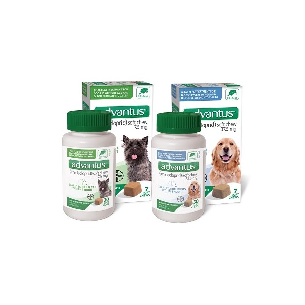Advantus Small Dog Soft Chew 7.5mg 7ct