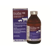 Enrofloxacin Injection 100mg/ml 100ml