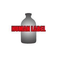 Simple Syrup Unflavored 16oz