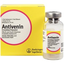 Antivenin Injection 10ml