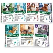 Advantage II Cat Orange 5-9lb  6pk