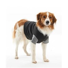 Buster Classic Body Suit Dog Small 42Cm Black / Grey 273971