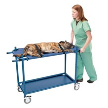 Olympic Exam Treatment Gurney With Soft Stretcher Only