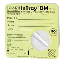 DTM Intray 20ct