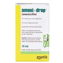 Amoxi Drops 50mg 15ml 12/pk