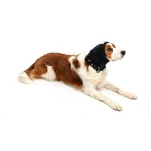 Buster Ear Cover X Small - XX Large 6 Pack